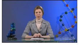 История развития генетики. Гибридологический метод
