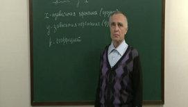 Функции y=k/x, y=√x, y=|x|