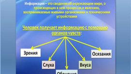 Действия с информацией. Формы представления информации