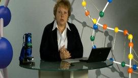 Взаимодействие аллельных и неаллельных генов