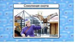 Класс птицы. Отряды Дневные хищные, Совы и Куриные